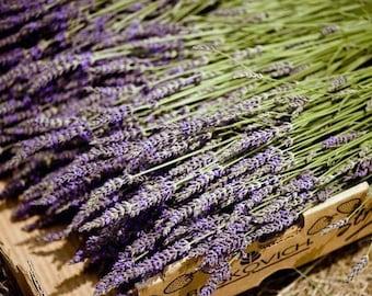 Large  French Lavender Bunch Bouquet 250 Bulk Stems Dried Flowers  Sustainable Wedding Decor, Centerpieces, Table Arrangements, DIY
