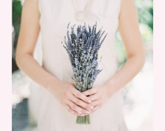 Lavender Bouquets or Sample of French or English Lavender Brides Bridesmaids