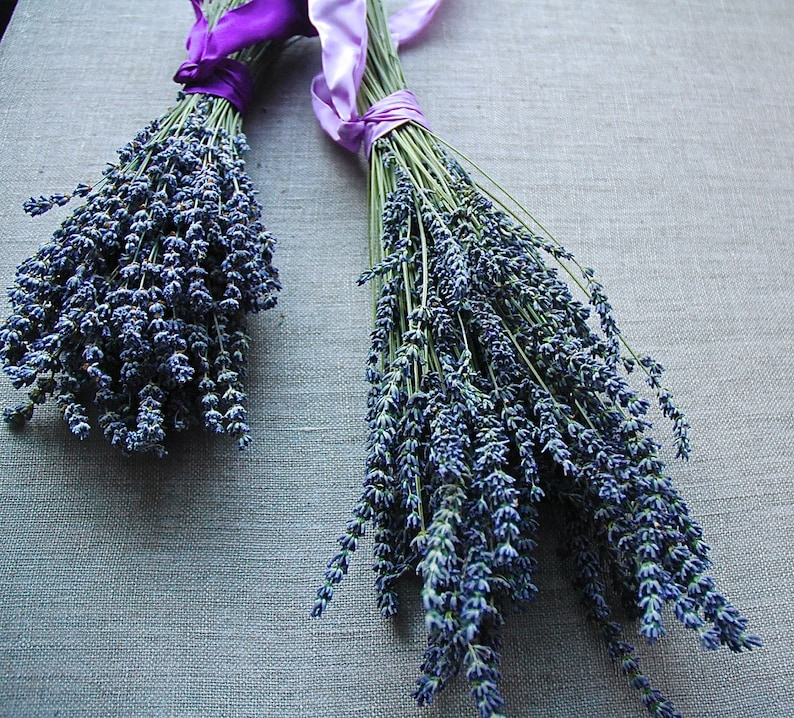 CUSTOM Bridesmaid Bouquet of French or English Lavender image 0