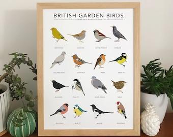 Garden bird print - 'British Garden Birds' poster - wildlife wall art, nature illustrations, birdwatching chart, nature gift, new home gift