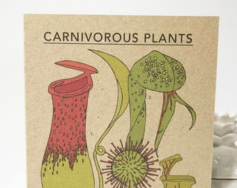 Carnivorous Plants card - plant illustration - eco friendly - recycled kraft card - plant collection cards