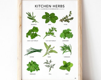 Kitchen Herbs print - illustrated plant poster - wall art home decor , cooking gift , new home gift , herb guide , kitchen art , cookery art