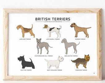 British Terriers print / dog wall art / dog decor- dog breed illustrations / border terrier dog / yorkshire terrier / home gift / dog gift