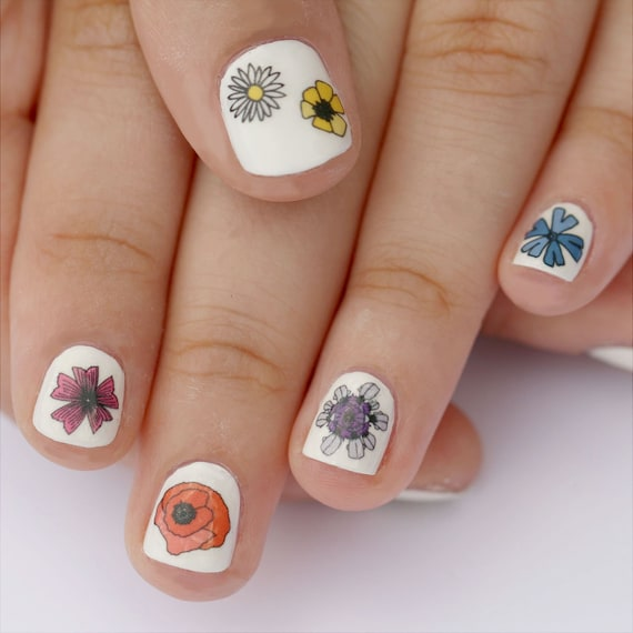 Nail Art Supplies New Zealand: Wild Flower Nail Transfers Illustrated Floral Nail Art