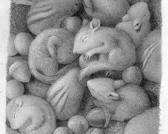Bunny Chipmunk Squirrel Baby Drawing Black and White Pencil Nature Cute