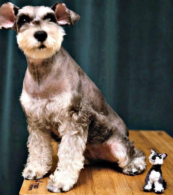 Dog Schnauzer Needle felted Dog