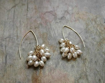 gold filled pearl cluster earrings