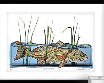 Archival Redfish in the Reeds Limited Edition Giclee Print 13x19
