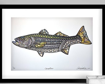 Archival Striped Bass Limited Edition Gicleé Print 11x17