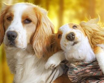 Custom Pet Replica, Dog Replica, Pet Loss Gift, Pet Memorial Gift, Plush Dog, Personalized Pet Gift, Dog Lover Gift, Pet Lover Gift, Dog Mom