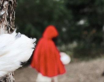 Little Red Riding Hood 5x7 Photo Fine Art Photography
