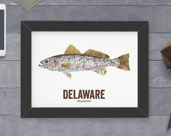 Delaware State Fish, Map art, Nature Outdoor art, Vintage Map art, Art print, Fish Wall decor, Fish Art, Gift For Him - Weakfish