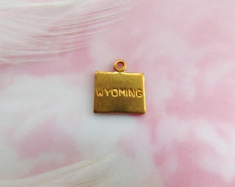 Closeout BRASS (12 Pieces) Wyoming United States USA Engraved Tiny Raw Brass Charms Stampings~ Jewelry Ornament Findings  CV