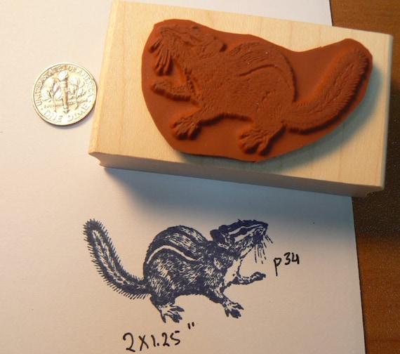 Chipmunk Rubber Stamp Fall Harvest J26204 WM Gathering Acorns in Autumn Leaves