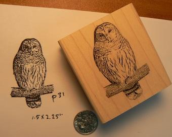 Owl rubber stamp WM P31