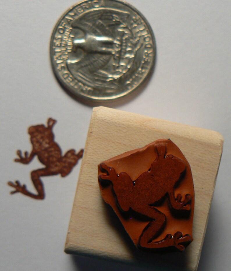 P24 Miniature tree frog rubber stamp Wm