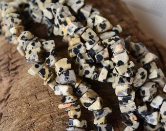 "Dalmatian Jasper 34"" Chip Beads Natural Spotted Gemstone Bead Strand Tan Grey Black"