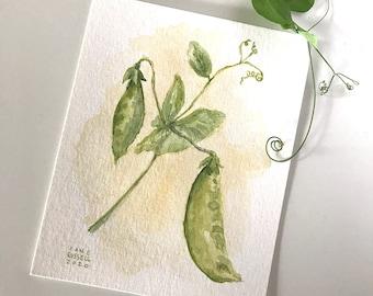 Garden Peas Tiny Original Watercolor Painting Free Shipping