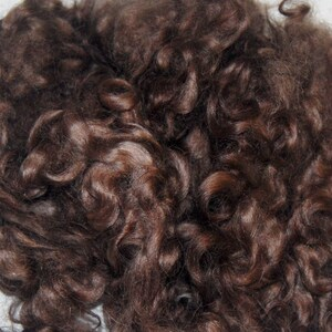Doll Wigs Cotswold Wool Locks Blythe Reroot Curly Doll Hair Locks for Spinning Needle Felting in Shades of Iris Purple 1 oz.