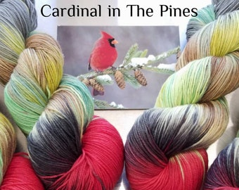 "Hand Dyed Sock Yarn, ""Cardinal in The Pines"" (112818), Hand Painted Sock Yarn, Variegated SW Merino Wool Nylon Yarn, Quick Step Sock"