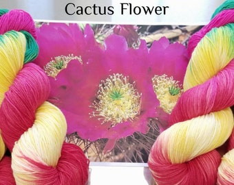 "Hand Dyed Sock Yarn, ""Cactus Flower"" (112018), Hand Painted Sock Yarn, Variegated SW Merino Wool Nylon Yarn, Quick Step Sock"