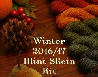 Hand Dyed Sock Yarn, Multicolor Set Kettle Dyed, Quick Step Sock MINI Skein SET