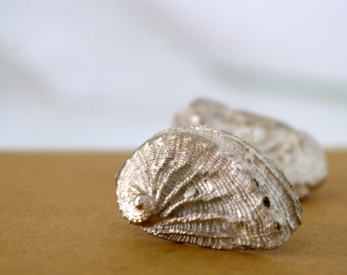 Bridal Earrings Abalone Sea Shell Stud Earrings Nautical Sterling Silver