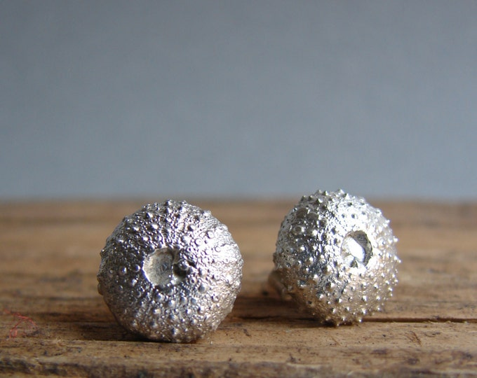 Urchin Stud silver Earrings Jewelry, nautical  stocking stuffer Nature Inspired   Shell Jewelry