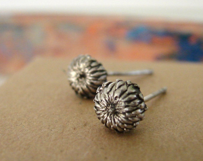 Botanical Jewerly Acorn Studs Sterling Silver Stud Earrings Woodland Series