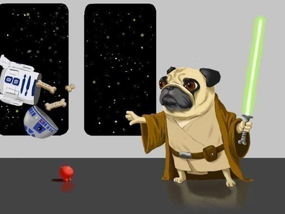 Pug Dog Star Wars Jedi Darth Art iphone case