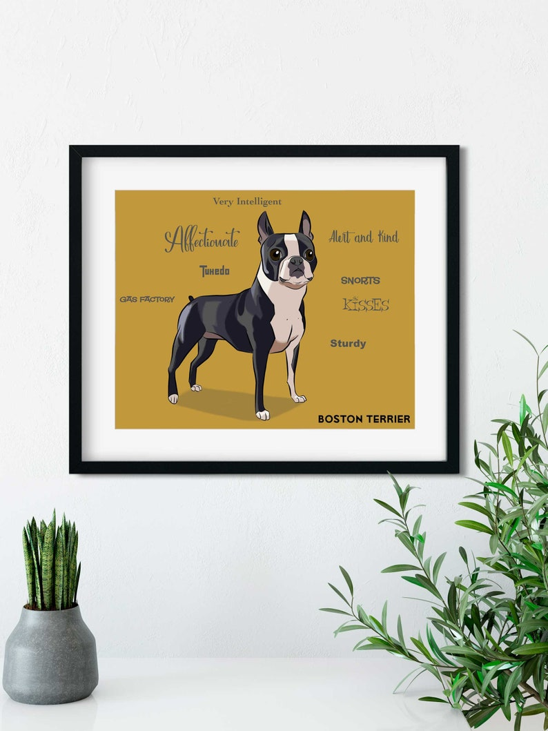 Boston Terrier traits Boston Terrier gifts Boston Terrier image 0