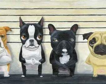 The Line Up - Boston Terrier dog art print