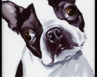 Boston Terrier Cute Magnet, boston terrier gift, boston terrier art