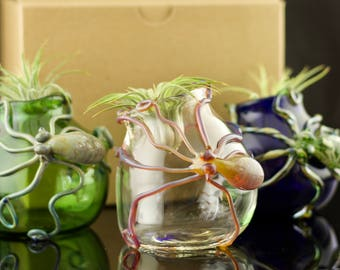 Octopus Globe Terrarium / Glass Planter / Succulent Planter / Air Plant Holder / You Choose the Color / Made to Order
