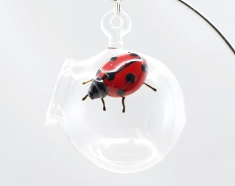 Ladybug Glass Globe Terrarium in Clear & Ruby, #837