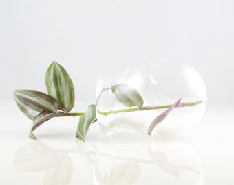 3'' Terrarium Glass Globe Sitting in Clear, #809
