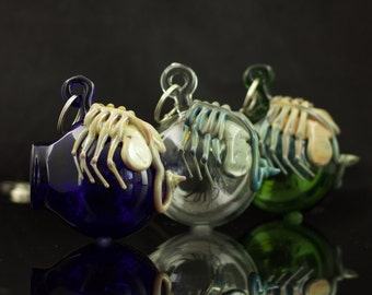 Facehugger Glass Globe Hanging Terrarium in Your Choice of Color