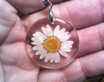 Gerber Daisy \u2022 Earrings Key chain Pendant Necklace