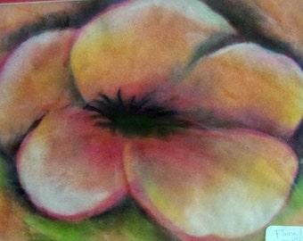 original art  drawing 11x14 orange hibiscus