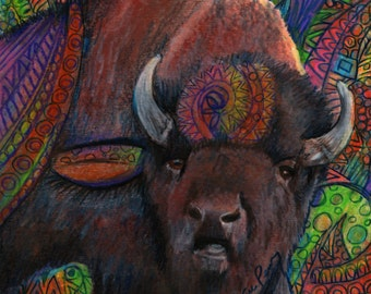 original art drawing color pencil buffalo bison zentangle design