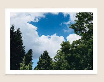 Printed greeting card 55x425 blank inside etsy three printed greeting cards sky clouds trees 55x425 nature scenes blank inside note cards handmade stationery ready to ship m4hsunfo