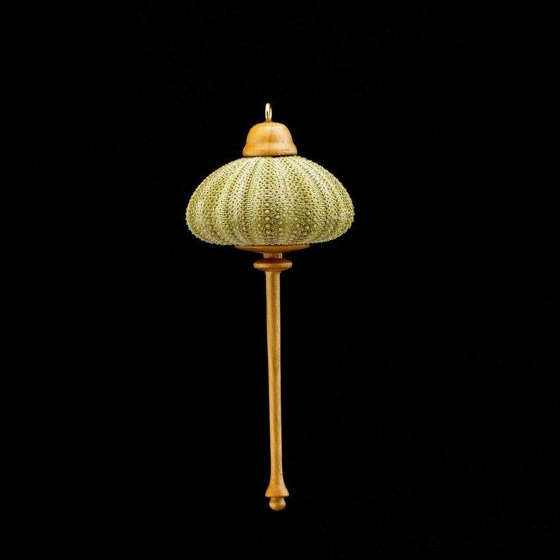 Ornament Green Sea Urchin & Cottonwood OR55 image 0