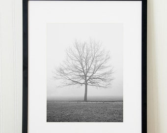 Black and white landscape photography print. Foggy tree print. Unframed fine art nature picture. Extra large wall art for family room.