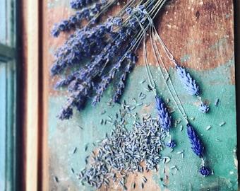 Lavender Glass Bead Pendant Necklace