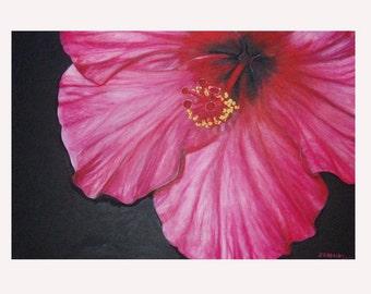 Hibiscus One - JENDRIA Original Oil Painting Art