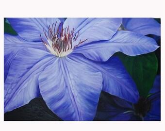Clematis Purple - JENDRIA Original Oil Painting Art