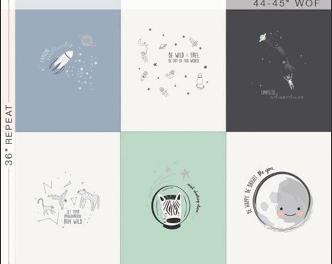 Stargazer Panel, Planet Decor Nursery, Space, Neutral Nursery, Easy Quilt, Baby Quilt, Art Gallery- Stardgazer 1 Yard Panel