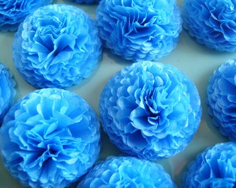 Pacific Blue Tissue Etsy