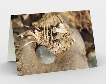 Notecards - Natural Treasures  - At The Beach 1