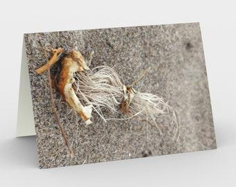 Notecards - Natural Treasures - At The Beach 10